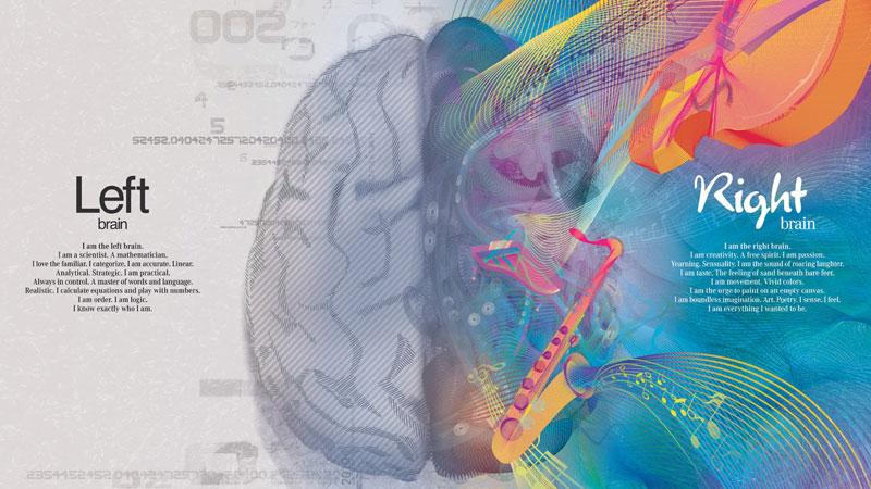 creativita e gli emisferi cerebrali